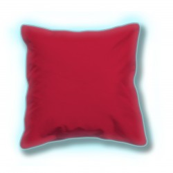 2 Coussins lumineux - Rouge