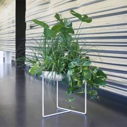Jardinière design D50
