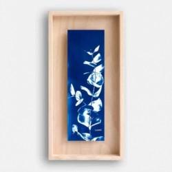 Affiche cyanotype et cadre - Eucalyptus