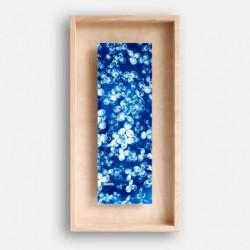 Affiche cyanotype et cadre - Trèfles