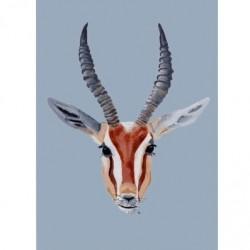 Affiche - Gazelle