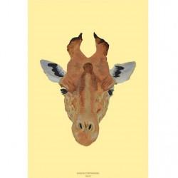 Affiche - Girafe