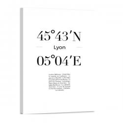 Toile GPS - Lyon