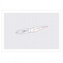 Affiche Naïade - Plongeon
