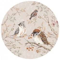 Sticker mural rond - Oiseaux