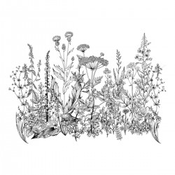 Sticker mural - Botanique