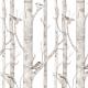 Papier peint - Forêt enchantée