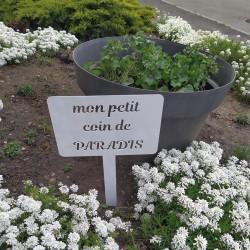Etiquette de jardin - PARADIS
